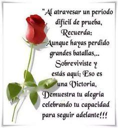 Frases Bonitas Para Facebook: Imagen de Rosas Con Mensajes De Superacion