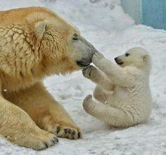 Mama and baby:)