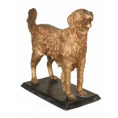 Bronze Golden Retriever
