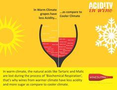 acidity 03