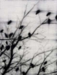 Nesting- Hamilton Aguiar