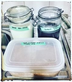 Meanwhile in the home kitchen #kefir #kombucha and #sourdough #starter #goodculture #healthyfood #healthyeating #growyourbeard #fermentyourfood  #sgfoodblogger