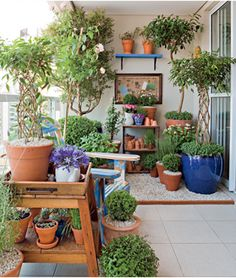 Para delimitar o espaço com plantas, a paisagista Claudia optou por pedriscos. A área foi cercada por uma ripa de madeira colada no piso. A solução é mais barata que o uso de deque de madeira.