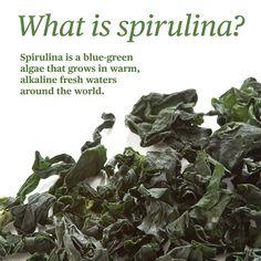 Spirulina is a blue-green algae that grows in warm, alkaline fresh waters around the world.