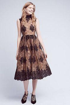 Ardor Lace Dress