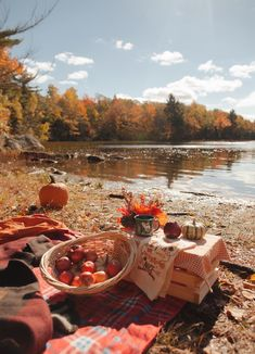 Maine In The Fall, Fall Picnic, Autumn Cozy, Your Perfect, Shades Of Red, Autumnal, Wanderlust, Spa, Camping