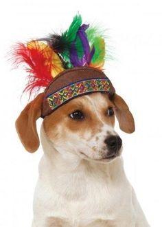 a267008e885 Native American Headdress Dog Hat Native American Headdress