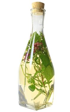 Herb-Infused Vinegar Recipe: Lemon Balm - Food and Recipes - Mother Earth Living