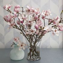 The satiny pink blossoms of Tulip Magnolia are a lovely sight to see in the depths of winter. In bud stage and in bloom, these branches add natural beauty and sculptural form to any décor. Orchid Arrangements, Beautiful Flower Arrangements, Beautiful Flowers, Flower Centerpieces, Flower Vases, Flower Decorations, Magnolia Bouquet, Magnolia Branch, Magnolia Flower