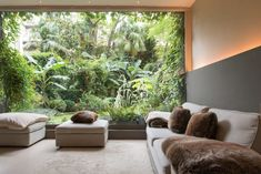 Outdoor Furniture Sets, Outdoor Decor, Large Photos, Tropical Garden, Architecture, Location, Wines, Netherlands, Places