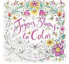 My adult coloring book.  It's quite fun to do, releases stress, kills time on airplanes  This book in particular got my attention.  There are SO many to choose from.