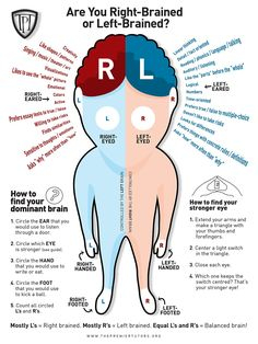 left brain or right brain test - Yahoo Image Search Results Brain Science, Science Fair, Brain Gym, Brain Diagram, Left Brain Right Brain, Brain Parts, Emotional Pictures, Brain Anatomy, Psychology Facts