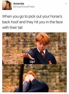 Ron Weasley knows my academic strugglesYou can find Ron weasley and more on our website.Ron Weasley knows my academic struggles Harry Potter World, Harry Potter Puns, Funny Harry Potter Quotes, Harry Potter Ginny Weasley, Hermione Granger, Hogwarts, Harry Potter Pictures, Lord Voldemort, Favim