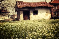 I would love to get married in Bulgaria in a rustic old cottage <3