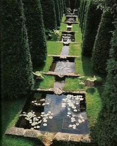 water features / koi pond in garden to bring japanese element into formal garden? Formal Gardens, Outdoor Gardens, Small Water Gardens, Tropical Gardens, Landscape Architecture, Landscape Design, Pond Design, Landscape Plans, The Secret Garden