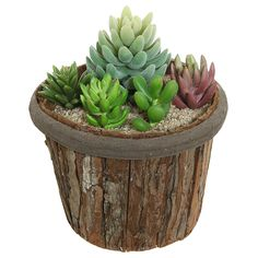 Amazon.com: 7 inch Natural Wood Tree Bark Design Brown Succulent Plant Holder Pot / Decorative Flower Planter: Patio, Lawn & Garden