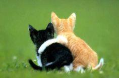 sweet friendship~^^