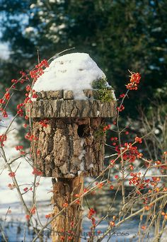 Birdhouse made of log with bark sits in winter garden covered in snow and wrapped in red holly berries, Miswest USA