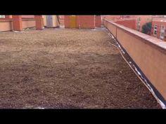 Rehabilitación del tejado e impermeabilización en madrid