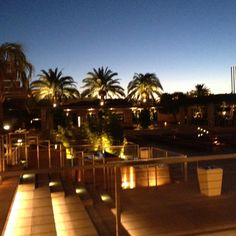 The M Resort in Las Vegas is a nice place to stay! 21st Birthday, Birthday Ideas, Nice Place, Las Vegas, Spaces, Plants, Travel, Trips, Viajes