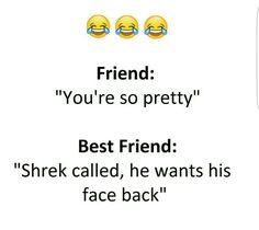 friend : you're so pretty..  shrek called