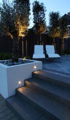 Backyard Pool Designs, Backyard Garden Design, Patio Design, Backyard Patio, Modern Garden Design, Landscape Design, Patio Steps, Backyard Lighting, Home Landscaping