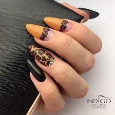 Get Nails, Fancy Nails, Pretty Nails, Hair And Nails, Fall Nail Art Designs, Acrylic Nail Designs, Nail Art Printer, Leopard Print Nails, Indigo Nails