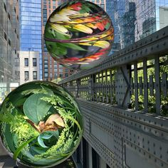 Wild, Heterotopias Augmented Reality installations reflect thriving garden and newly built architecture around the HighLine. Creating A Portfolio, Monthly Themes, High Line, Digital Magazine, Meet The Team, Global Art, Augmented Reality, Public Art, Geography