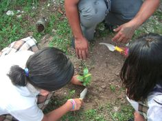 Planting seedlings at local school with the students - a super fun activity for the whole family Corporate Social Responsibility, Fun Activities, Planting, Discovery, Mexico, Students, Learning, School, Plants