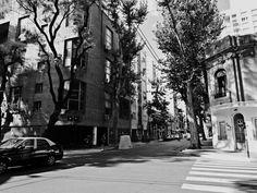 https://flic.kr/s/aHskBgywWV | Calle Guatemala y Gurruchaga East, Palermo Soho, Buenos Aires | Calle Guatemala y Gurruchaga East, Palermo Soho, Buenos Aires