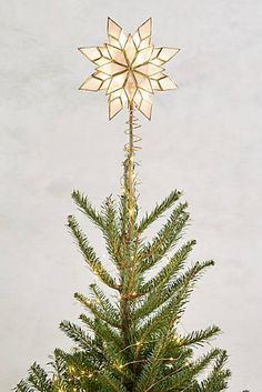 Capiz Star Tree Topper