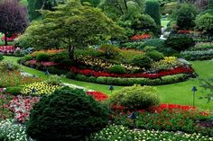 Landscaping Company, Modern Landscaping, Irrigation System Design, Landscape Solutions, Commercial Landscaping, Professional Landscaping, Lawn Maintenance, Landscape Services, Lawn Care