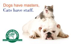 """""""Dogs have masters, cats have staff."""""""