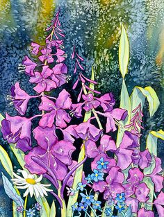 Fireweed and Forget Me Nots. watercolor by Teresa Ascone