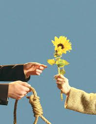 harold and maude PROTEST PEACE - Google Search