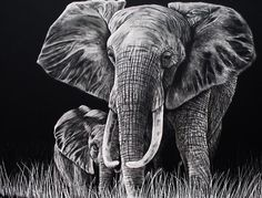 Scratch Art Elephant and Baby~Roll Tide! Beneath the Surface Craft Project.
