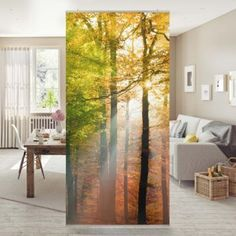 Room divider - Morning Light 250x120cm 250x120 incl. Transparent holder-5.00 ...  #250x120cm #divider #holder #light #morning #transparent Room Divider Curtain, Curtain Room, 3d Wallpaper, Wallpaper Ideas, Morning Light, Curtains, Living Room, Furniture, Home Decor