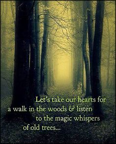Let's take our hearts for a walk in the woods and listen to the magic whispers of old trees | Popular inspirational quotes at EmilysQuotes