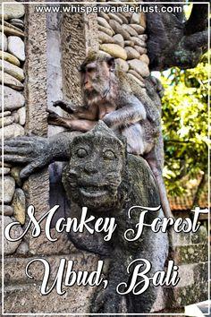 Sacred Monkey Forest Ubud Bali | Monkey Forest Sanctuary | UBUD | Bali | monkeys | Indonesia | Bali island | ubud bali | ubud monkeys | bali monkeys |