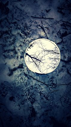 Mirror  by Jarek Kot on tookapic