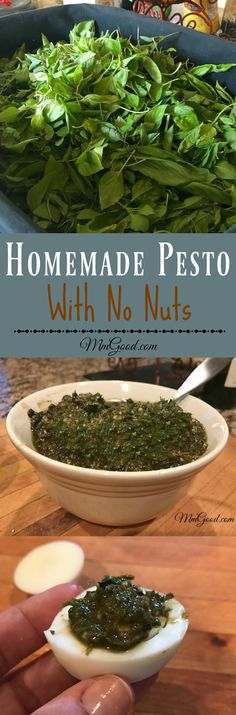 A homemade pesto with no nuts!  Using garden fresh basil, garlic, oil and parmesan cheese so simple and delicious!  This recipe is perfect for end of summer basil from your garden or anytime.  The pesto is great on pasta, chicken and even eggs!!! | www.MmGood.com