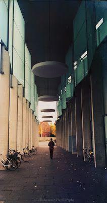 haiku - eine annäherung: Autumn in the City autumn in the city the echo of your soft burning lips      veredit©isabella.kramer15