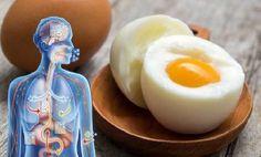 Prečo sú vajíčka zabijakmi tuku   Mega chudnutie
