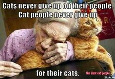 Cats never give up on their people Cat people never give up on their cats Crazy Cat Lady, Crazy Cats, I Love Cats, Cute Cats, Pretty Cats, Beautiful Cats, Beautiful People, Animals And Pets, Cute Animals