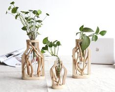 Rhea - Creative Wooden Vase – Warmly Add creative natural style to your space with a gorgeous wooden vase! Made from wood & glass. Wooden Statues, Wooden Vase, Wooden Figurines, Wooden Decor, Ficus Pumila, Indoor Water Garden, Indoor Plants, Wood Glass, Glass Vase