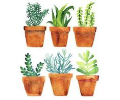 garden painting Home garden Art Print by Alexandra Dzh Watercolor Plants, Watercolor Cards, Watercolor Paintings, Watercolor Stickers, Canvas Paintings, Garden Painting, Garden Art, Painting & Drawing, Plant Painting