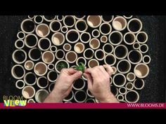 (3) Floral Design mit Bambus - YouTube