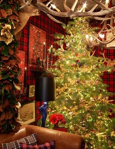 Holiday Party Planning Tips from Top Event Designers : Architectural Digest Decorating With Christmas Lights, Christmas Tree Themes, Christmas Traditions, Christmas Holidays, Holiday Decorating, Christmas Ideas, Christmas Crafts, Tartan Christmas, Country Christmas