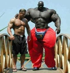 Hollyzood.com : Black giant Body Builder with too much muscles.