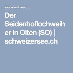 Seidenhoflochweiher (Olten, SO) - schweizersee.